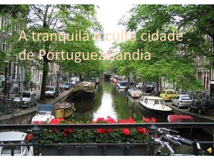 A tranquila e culta cidade de Portuguezelandia<br />
