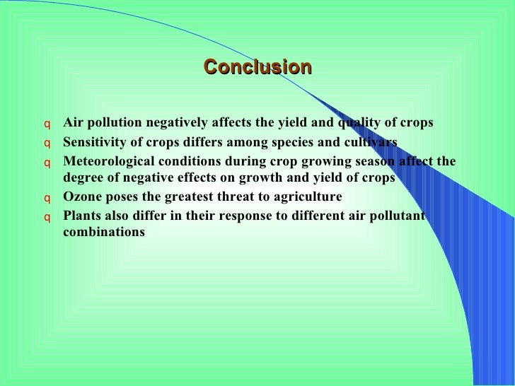 conclusion on noise pollution essay