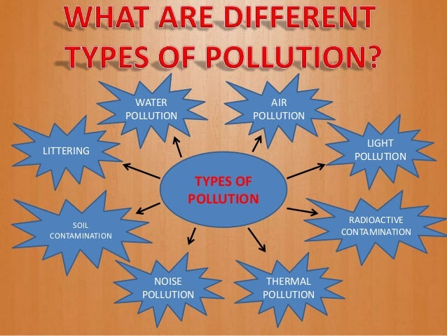 FREE Environmental Pollution Essay - ExampleEssays