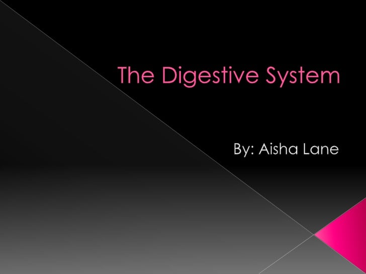 The Digestive System<br />By: Aisha Lane<br />