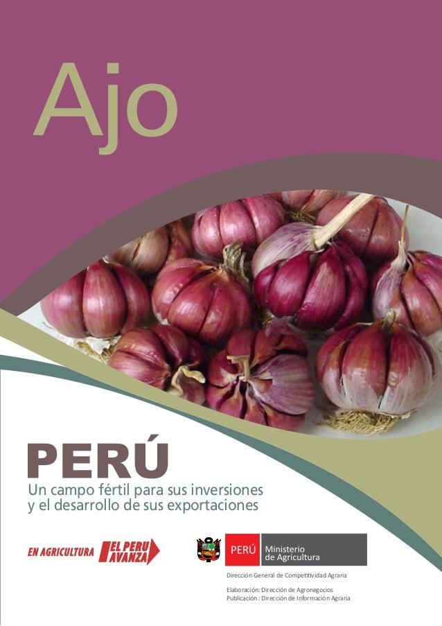Ajo Un campo fértil para sus inversiones y el desarrollo de sus exportaciones Dirección General de Competitividad Agraria ...