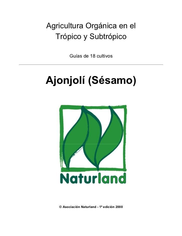 Agricultura Orgánica en el  Trópico y Subtrópico         Guías de 18 cultivosAjonjolí (Sésamo)   © Asociación Naturland - ...