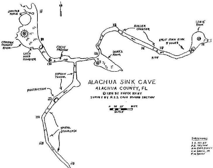 Alachua