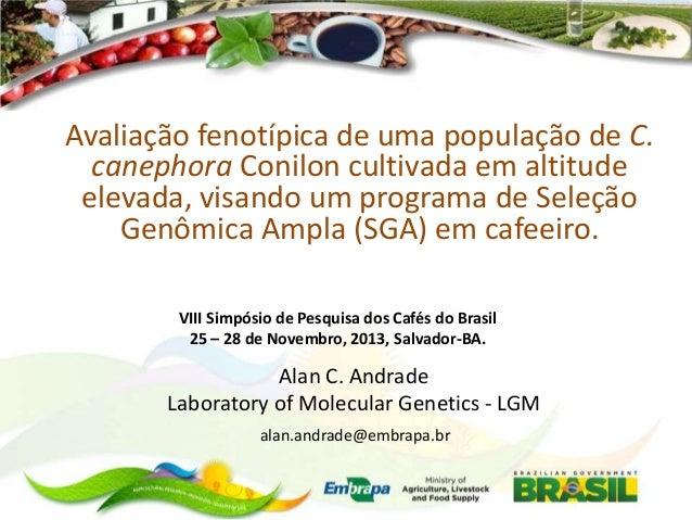 Alan andrade - Avaliação fenotípica de uma população de C. canephora Conilon cultivada em altitude elevada, visando um programa de Seleção Genômica Ampla (SGA) em cafeeiro.
