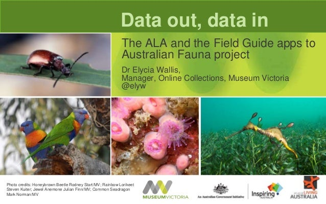 Data out, data inThe ALA and the Field Guide apps toAustralian Fauna projectDr Elycia Wallis,Manager, Online Collections, ...