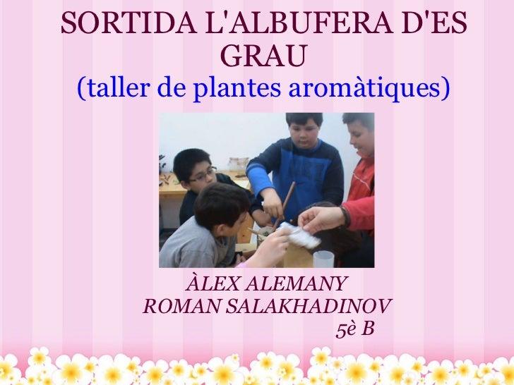 SORTIDA L'ALBUFERA D'ES GRAU (taller de plantes aromàtiques) ÀLEX ALEMANY ROMAN SALAKHADINOV ...