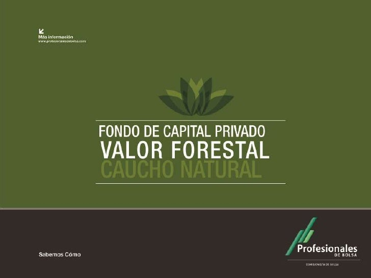 "ÁLBUM FOTOGRÁFICO   Fondo de Capital Privado       ""Valor Forestal""          2011"