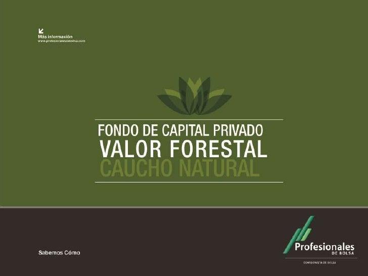"""Álbum FOTOGRÁFICO  Fondo de Capital Privado      """"Valor Forestal""""         2012"""