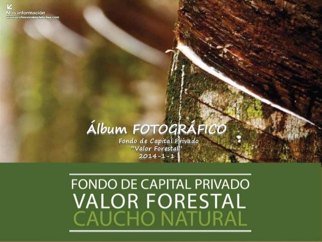 """Álbum FOTOGRÁFICO Fondo de Capital Privado """"Valor Forestal"""" 2014-1-1"""
