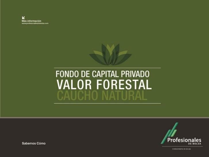 """Álbum FOTOGRÁFICO   Fondo de Capital Privado       """"Valor Forestal"""" Segundo semestre      2012"""
