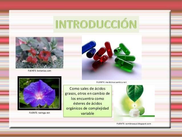 alcaloides y esteroides naturales