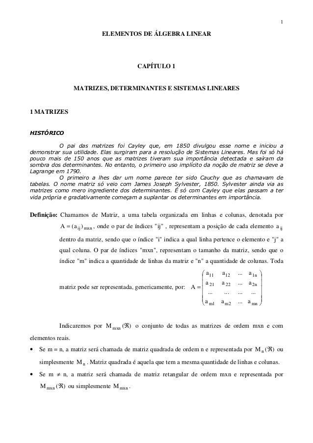 1ELEMENTOS DE ÁLGEBRA LINEARCAPÍTULO 1MATRIZES, DETERMINANTES E SISTEMAS LINEARES1 MATRIZESHISTÓRICOO pai das matrizes foi...