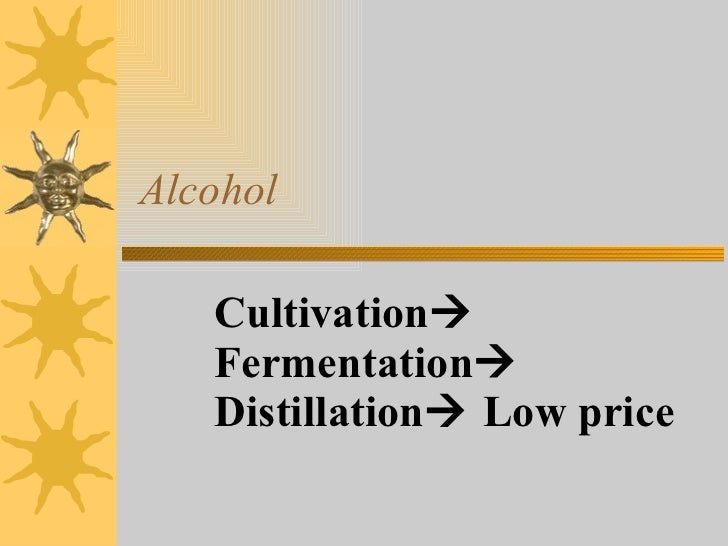 Alcohol Cultivation   Fermentation   Distillation   Low price