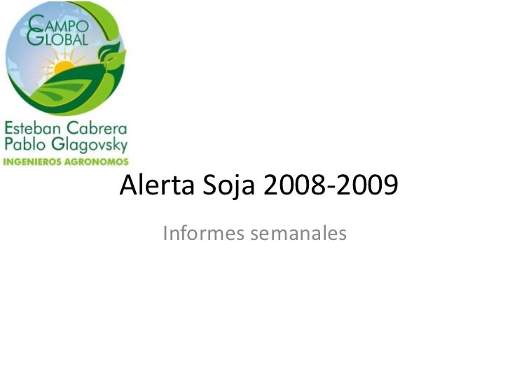 Alerta Soja 2008-2009   Informes semanales