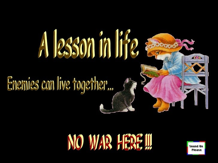 A lesson in life Enemies can live together... NO  WAR  HERE !!!