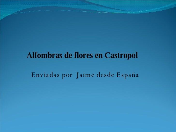 Alfombras De Flores En Castropol