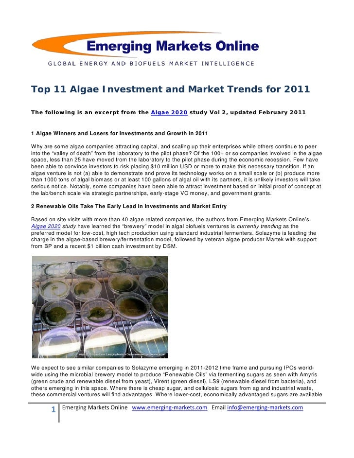 Algae2020 Study Global Tour