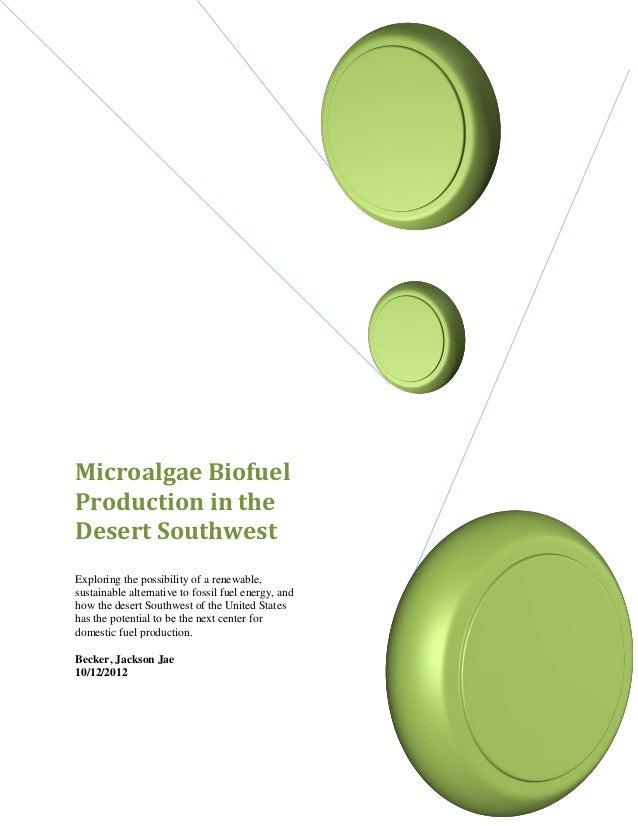 Algae biofuel production in the united states southwest