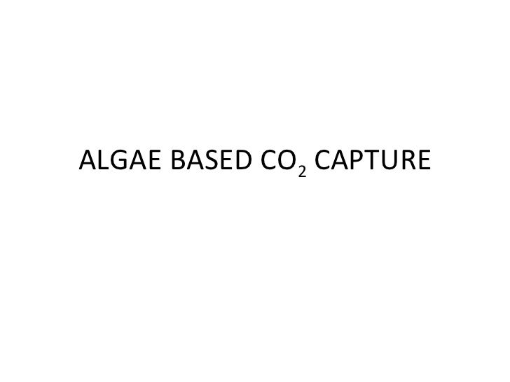 ALGAE BASED CO 2  CAPTURE
