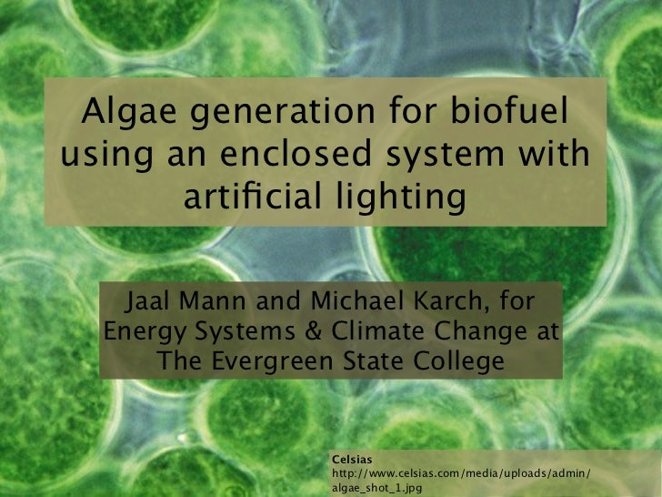 Algae generation for biofuelusing an enclosed system with       artificial lighting    Jaal Mann and Michael Karch, for  En...