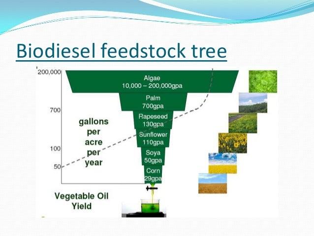 production of biofuels