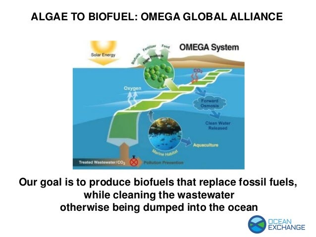 Our goal is to produce biofuels that replace fossil fuels, while cleaning the wastewater otherwise being dumped into the o...