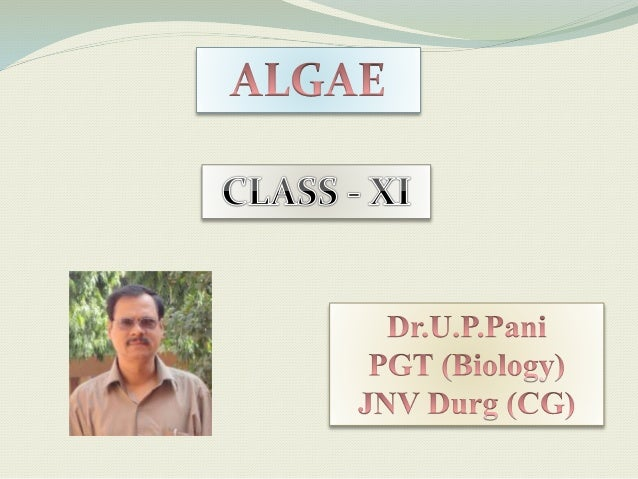  Algae are autotrophic, diverse group of eukaryotic organisms, ranging from unicellular to multicellular forms.  Aquatic...