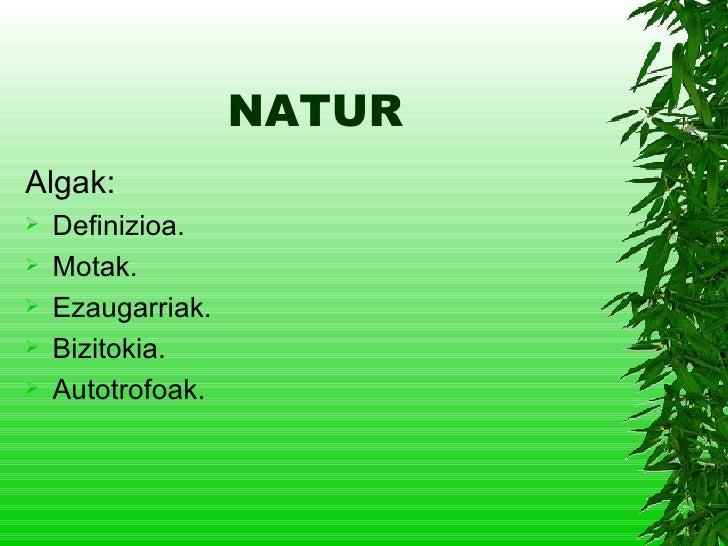 NATUR <ul><li>Algak: </li></ul><ul><li>Definizioa. </li></ul><ul><li>Motak. </li></ul><ul><li>Ezaugarriak. </li></ul><ul><...