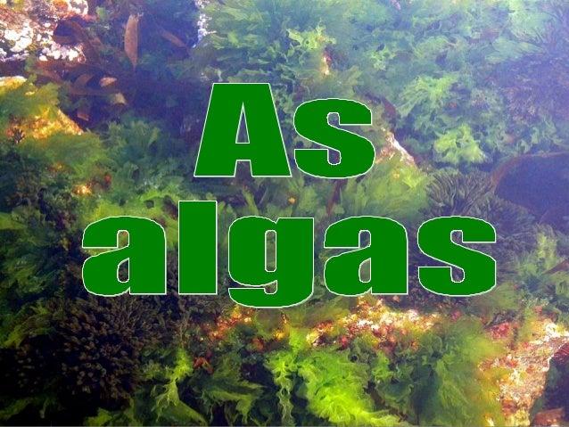 As algas son vexetais unicelulares, ou pluricelulares coas células sen diferenciar (non forman tecidos), e nutrición autót...