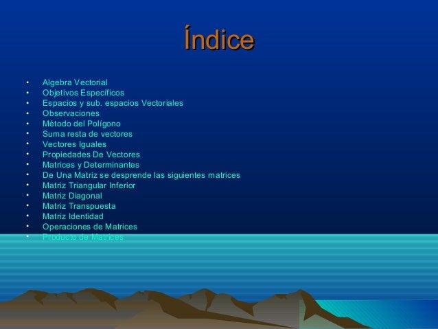 Índice•   Algebra Vectorial•   Objetivos Específicos•   Espacios y sub. espacios Vectoriales•   Observaciones•   Método de...