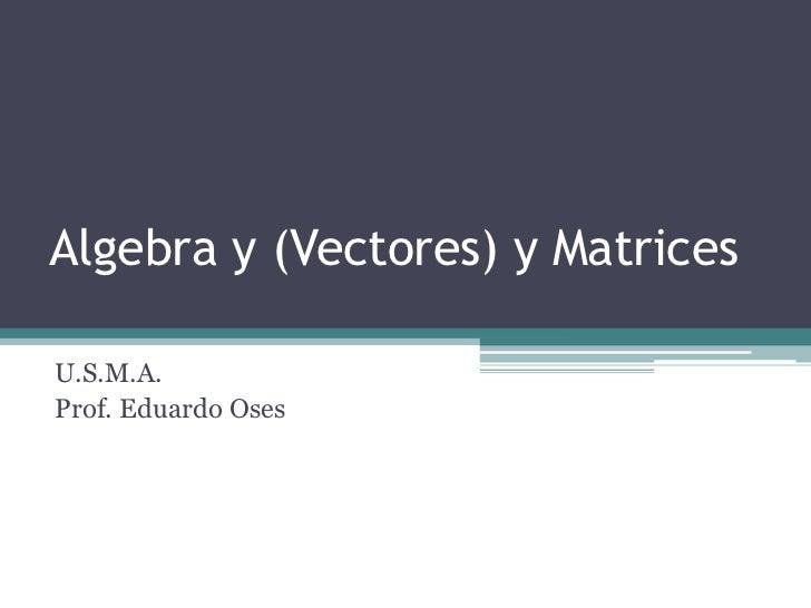 Algebra y (Vectores) y Matrices<br />U.S.M.A.<br />Prof. Eduardo Oses<br />