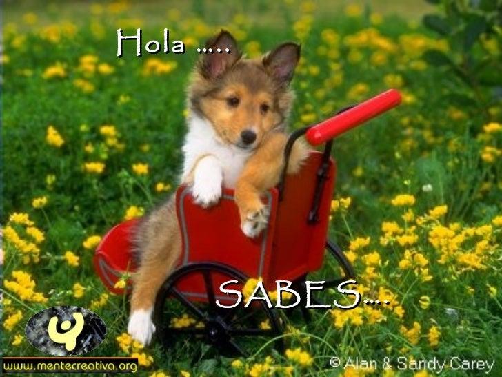 SABES…. Hola …..