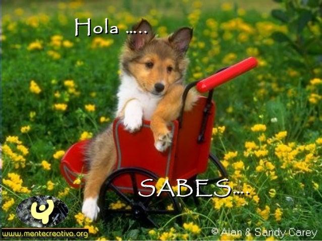 Hola …..      SABES….