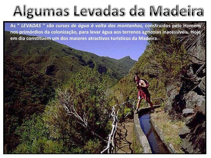 """Algumas Levadas da Madeira<br />As """" LEVADAS """" são cursos de água à volta das montanhas, construídos pelo Homem nos primór..."""