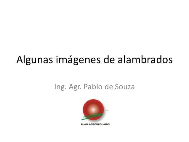 Algunas imágenes de alambrados       Ing. Agr. Pablo de Souza