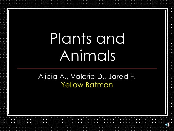 Plants and Animals Alicia A., Valerie D., Jared F. Yellow Batman