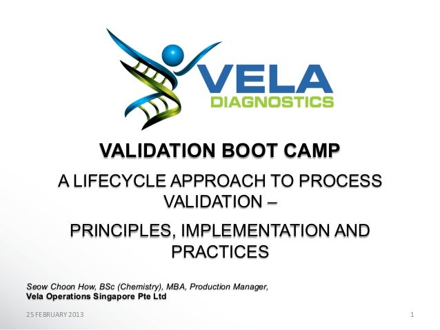 VALIDATION BOOT CAMP             A LIFECYCLE APPROACH TO PROCESS                        VALIDATION –                   PRI...