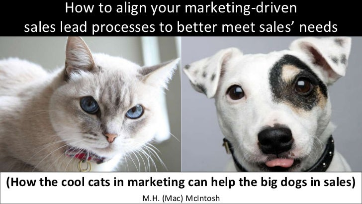 How to align your marketing-driven sales lead processes to better meet sales' needs (How the cool cats in marketing can help the big dogs in sales
