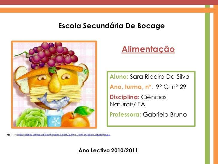 Escola Secundária De Bocage<br />Alimentação<br />Aluno: Sara Ribeiro Da Silva<br />Ano, turma, nº:  9º G  nº 29<br />Disc...