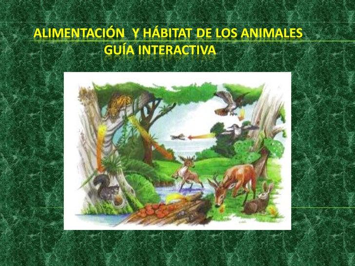 Los Animales según su Tipo de Alimentación.Los animales son consumidores y dependiendo de quécomen se les llama de diferen...