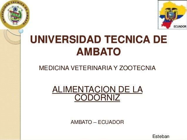 UNIVERSIDAD TECNICA DE AMBATO MEDICINA VETERINARIA Y ZOOTECNIA  ALIMENTACION DE LA CODORNIZ AMBATO – ECUADOR Esteban