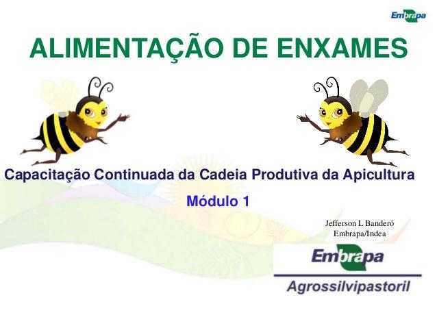 ALIMENTAÇÃO DE ENXAMESCapacitação Continuada da Cadeia Produtiva da Apicultura                        Módulo 1            ...