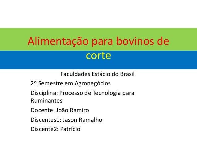 Alimentação para bovinos de corte Faculdades Estácio do Brasil 2º Semestre em Agronegócios Disciplina: Processo de Tecnolo...
