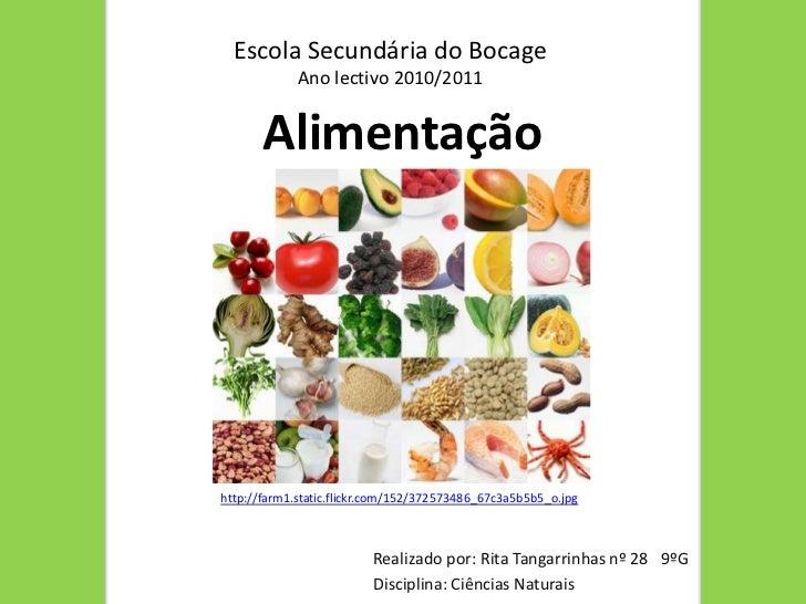 Escola Secundária do Bocage<br />Ano lectivo 2010/2011 <br />Alimentação<br />http://farm1.static.flickr.com/152/372573486...