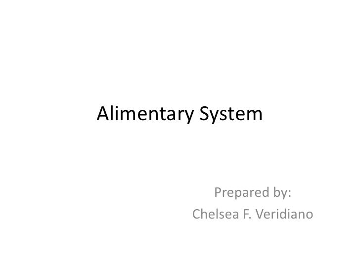 Alimentary System<br />Prepared by: <br />Chelsea F. Veridiano<br />