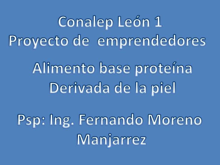Conalep León 1<br />Proyecto de  emprendedores<br />Alimento base proteína<br />Derivada de la piel<br />Psp: Ing. Fernand...