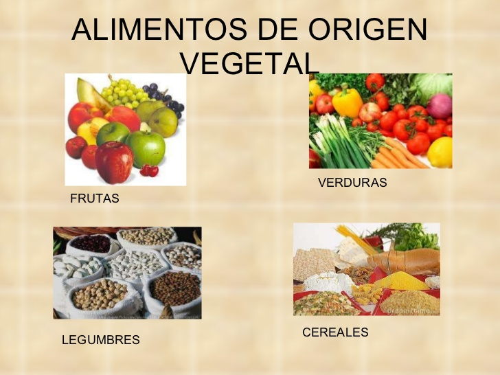 Nombres de alimentos de origen vegetal