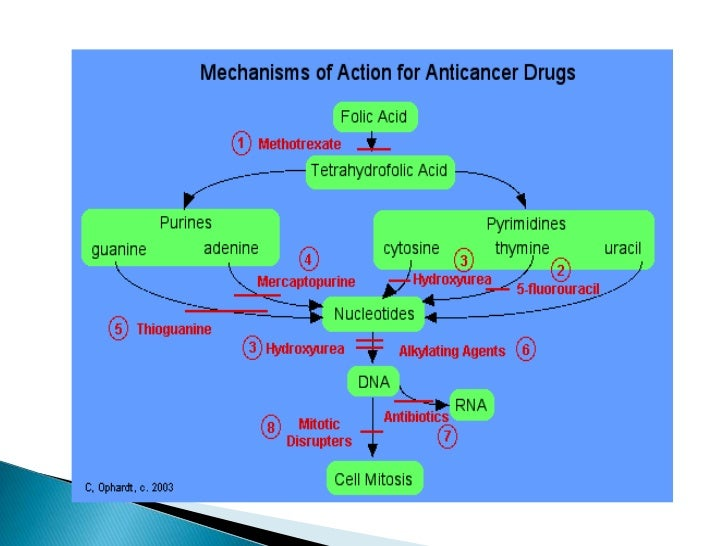 How can the chemo therapy drug Vincristine be harmful to the cells?