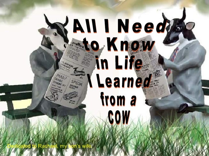 All I Need  to Know  in Life  I Learned from a  COW Dedicated to Rachael, my son's wife.