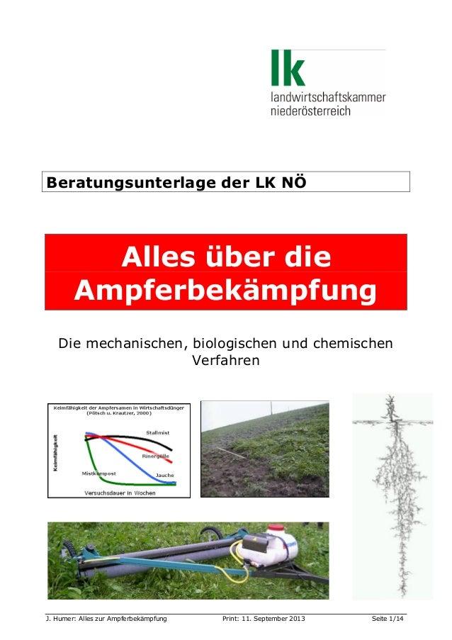 Beratungsunterlage der LK NÖ  Alles über die Ampferbekämpfung Die mechanischen, biologischen und chemischen Verfahren  J. ...